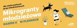 mikrogranty-mlodziezowe_nabórII