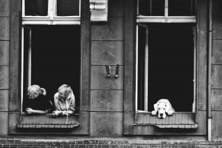 """fot. Magdalena Antkowiak """"pies w wielkim mieście"""""""